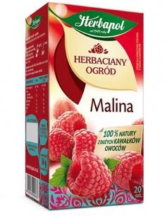 HERBATA HERBAPOL MALINA (20), 110007
